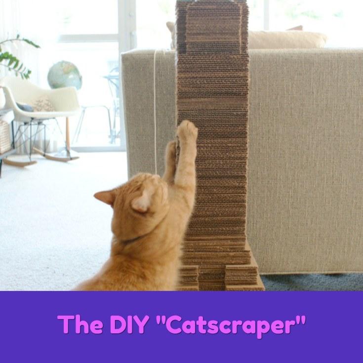9 Diy Cat Scratcher Ideas Your Cat Will Love 6 Is Just