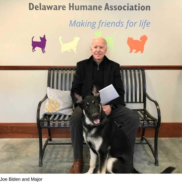Joe Biden Adopts Foster Dog