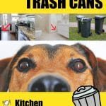 The Best Dog Proof Trash Cans and How To Keep Dogs Out Of Garbage