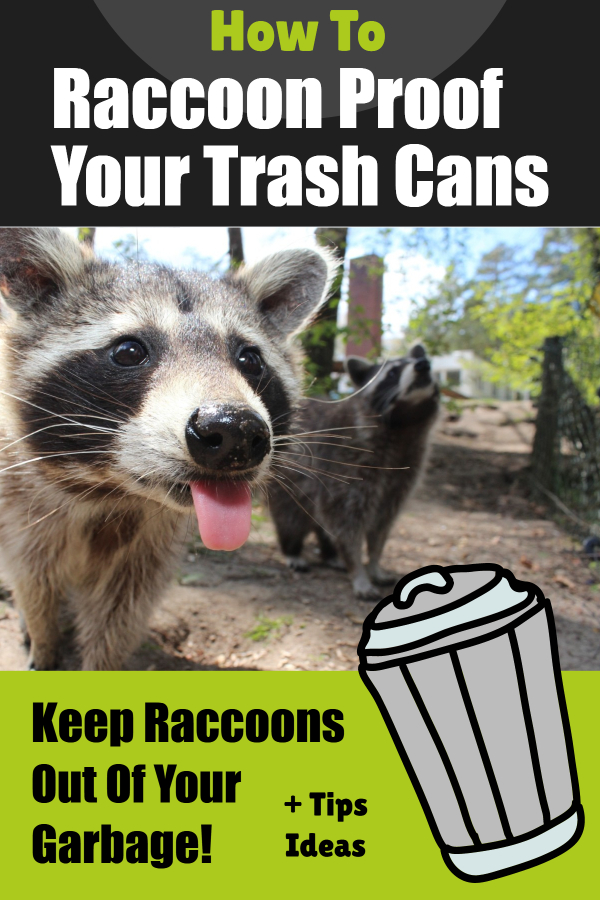Rodent Proof Garbage Cans