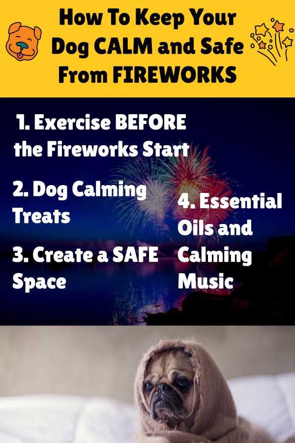 What Can I Give My Dog For Fireworks Anxiety? (10+ Calming